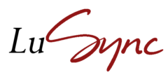 Lusync – usługi informatyczne Trójmiasto